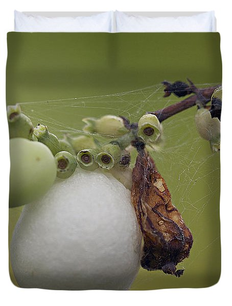 Duvet Cover featuring the photograph Webbed Berry by Eunice Gibb