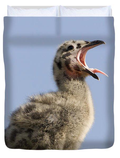 Western Gull Chick Begging For Food Duvet Cover by Sebastian Kennerknecht