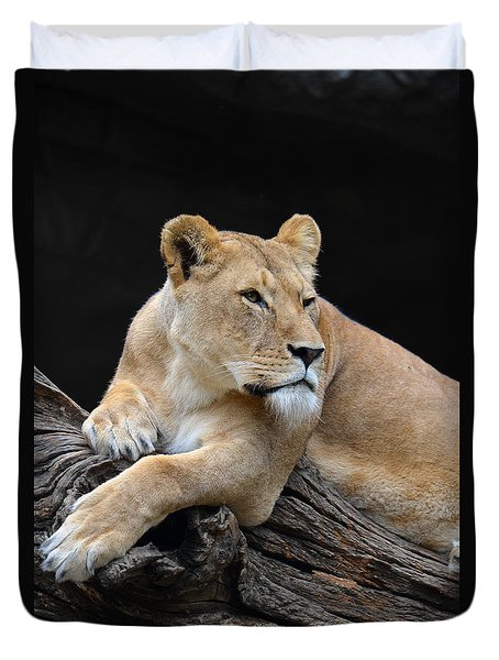 What Is Over There Duvet Cover by Eva Kaufman
