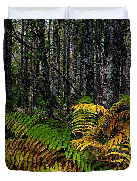 Where The Ferns Grow Duvet Cover