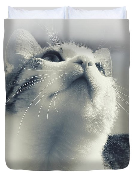 Whiskers Duvet Cover by Jutta Maria Pusl