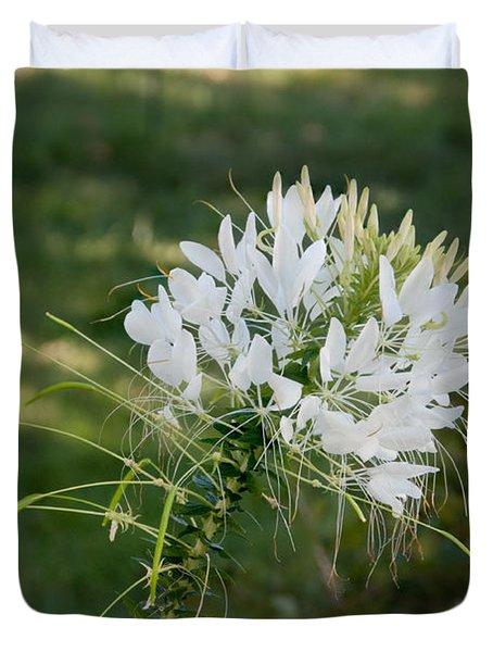 White Cleome Duvet Cover