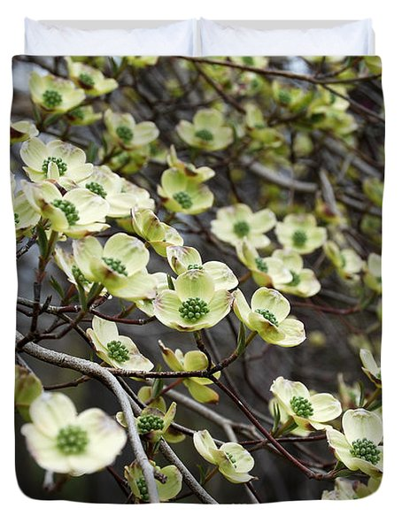 Duvet Cover featuring the photograph White Dogwood Tree by Eva Kaufman