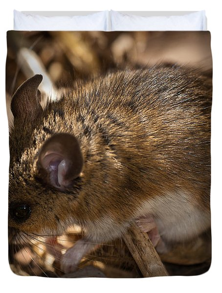 White-footed Mouse Duvet Cover by  Onyonet Photo Studios