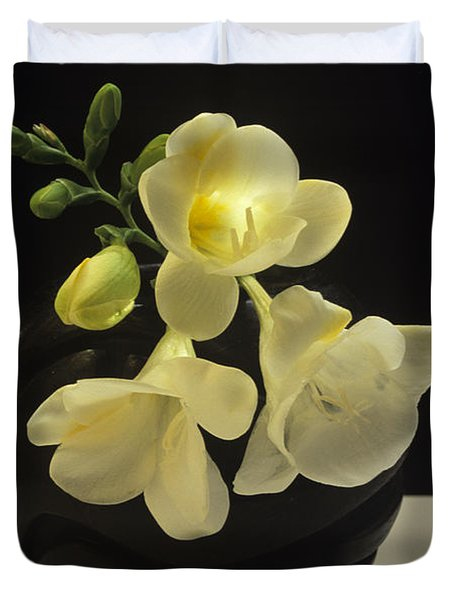 White Freesias In Black Vase Duvet Cover