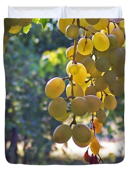 White Grapes Duvet Cover by Barbara McMahon