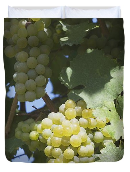 White Grapes On The Vine Duvet Cover by Michael Interisano