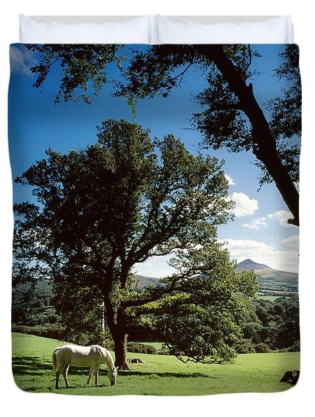White Horse At Powerscourt, Co Wicklow Duvet Cover by The Irish Image Collection