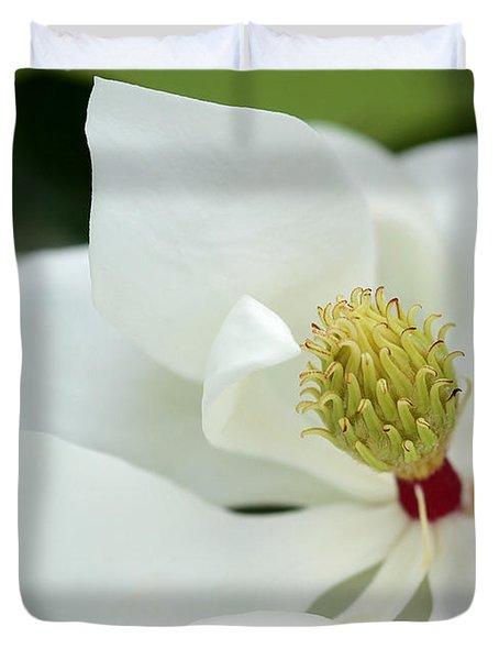White Magnolia Duvet Cover by Sabrina L Ryan