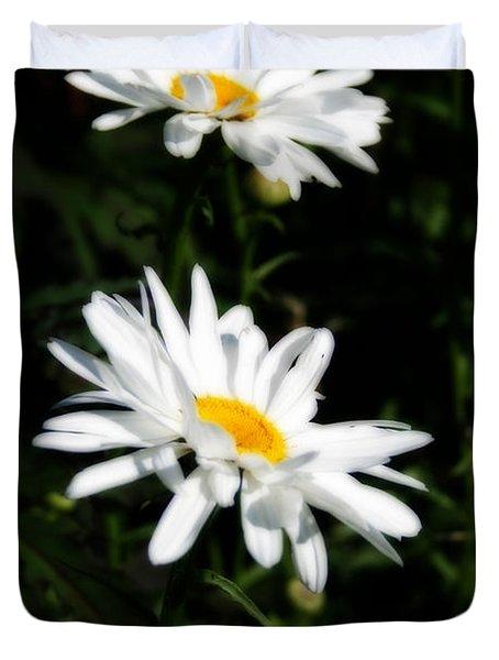 White Shasta Daisies Duvet Cover by Kay Novy
