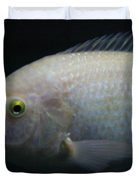White Tilapia With Yellow Eyes Duvet Cover