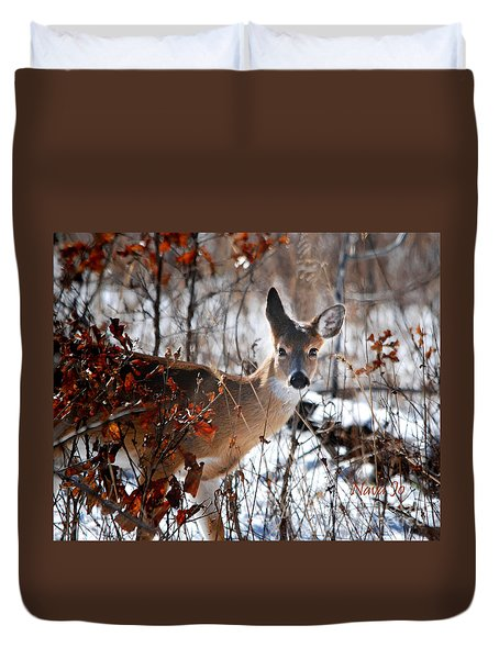 Whitetail Deer In Snow Duvet Cover