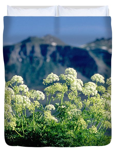 Wild Angelica Duvet Cover by James Steinberg and Photo Researchers