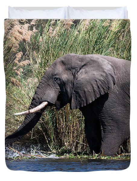 Duvet Cover featuring the photograph Wild Elephant Splashing In Water by Karen Lee Ensley