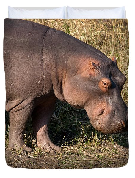 Duvet Cover featuring the photograph Wild Hippopotamus by Karen Lee Ensley
