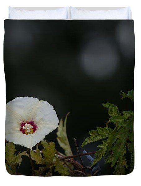 Duvet Cover featuring the photograph Wildflower On Fence by Ed Gleichman