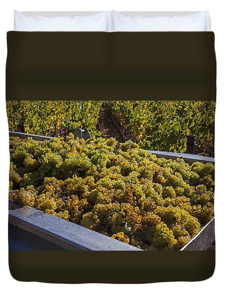 Wine Harvest Duvet Cover by Garry Gay