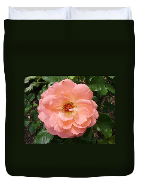 Wink Wink Duvet Cover by Emerald GreenForest