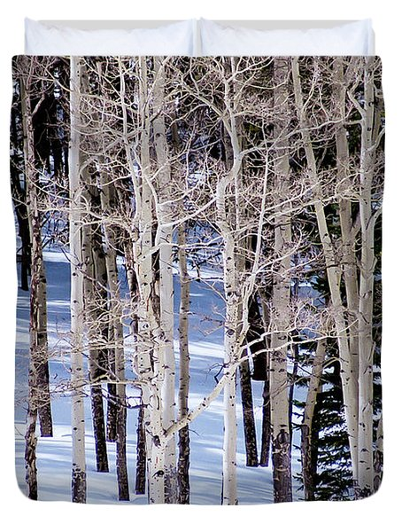 Duvet Cover featuring the photograph Winter Aspens by Colleen Coccia