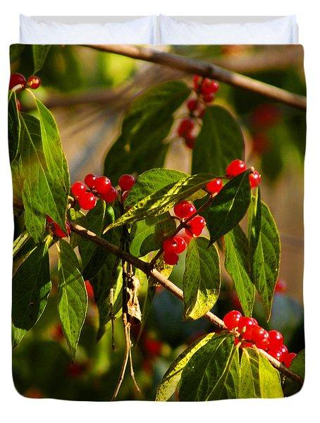Winter Bird Treet Duvet Cover by LeeAnn McLaneGoetz McLaneGoetzStudioLLCcom