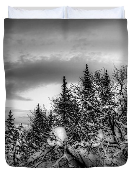 Duvet Cover featuring the photograph Winter Evening by Michele Cornelius