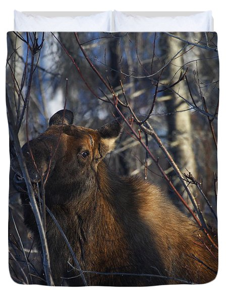Duvet Cover featuring the photograph Winter Food by Doug Lloyd