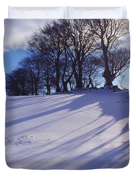 Winter Landscape Duvet Cover by The Irish Image Collection