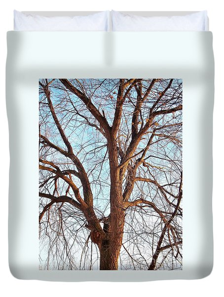 Duvet Cover featuring the photograph Winter Light by Chalet Roome-Rigdon