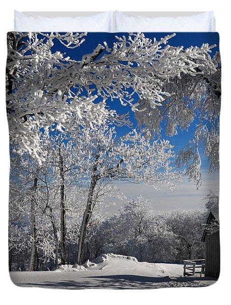 Winter Morning Duvet Cover by Lois Bryan