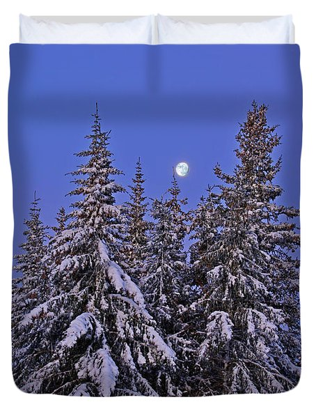 Duvet Cover featuring the photograph Winter Night by Michele Cornelius