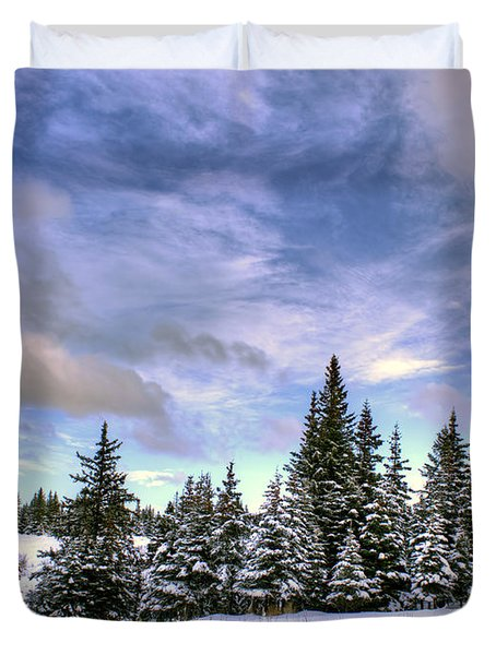 Duvet Cover featuring the photograph Winter Sky by Michele Cornelius