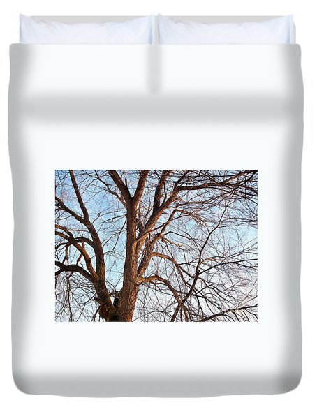 Duvet Cover featuring the photograph Winter Sunlight On Tree  by Chalet Roome-Rigdon