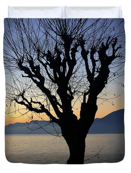 Winter Tree Duvet Cover by Joana Kruse