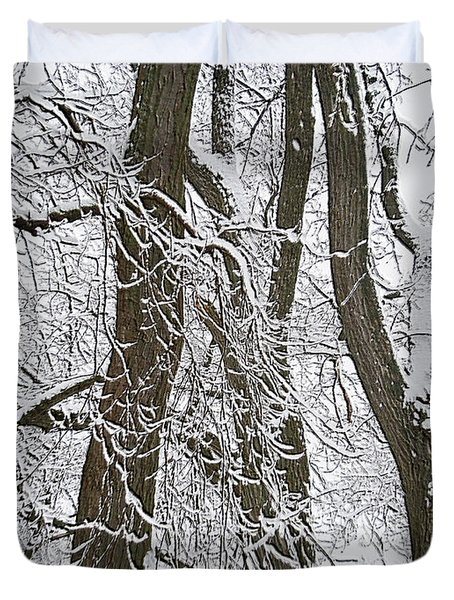 Winter Trees  Duvet Cover by Aimee L Maher Photography and Art Visit ALMGallerydotcom