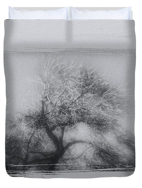 Winter Trees Duvet Cover by David Ridley