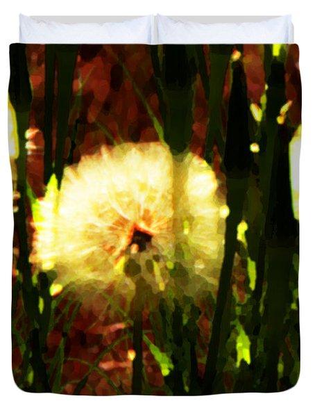 Worlds Within Worlds Duvet Cover by Lenore Senior