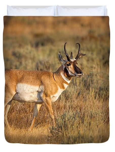 Wyoming Pronghorn Duvet Cover