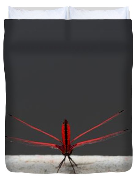 X Wing Dragonfly Duvet Cover by Nola Lee Kelsey
