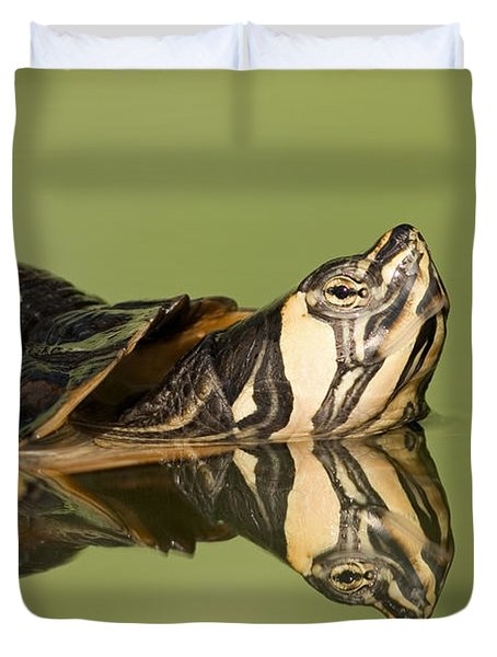 Yellow-bellied Slider Trachemys Scripta Duvet Cover by Ingo Arndt