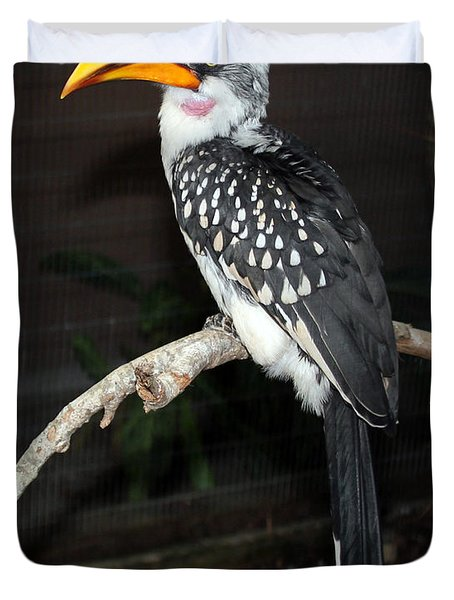 Duvet Cover featuring the photograph Yellow-billed Hornbill by Kathy  White