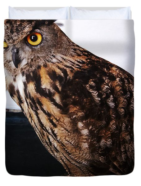 Yellow-eyed Owl Side Duvet Cover