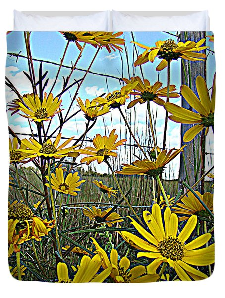 Duvet Cover featuring the photograph Yellow Flowers By The Roadside by Alice Gipson