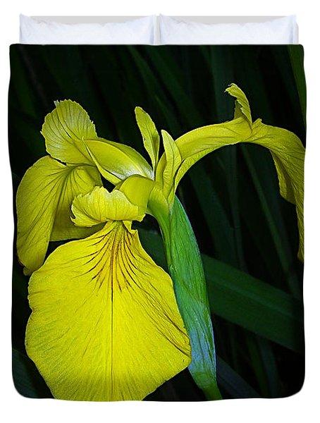 Yellow Iris Duvet Cover by Judi Bagwell