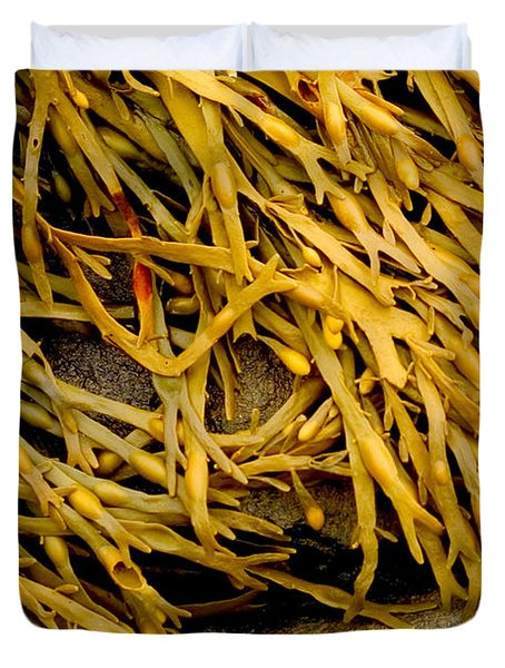 Duvet Cover featuring the photograph Yellow Kelp by Brent L Ander