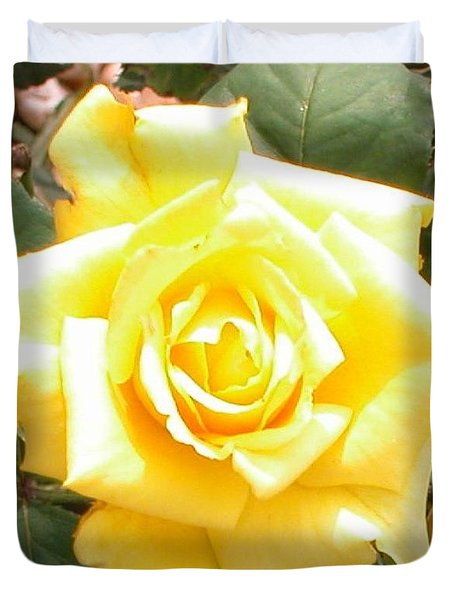 Yellow Rose At High Noon Duvet Cover by Alys Caviness-Gober