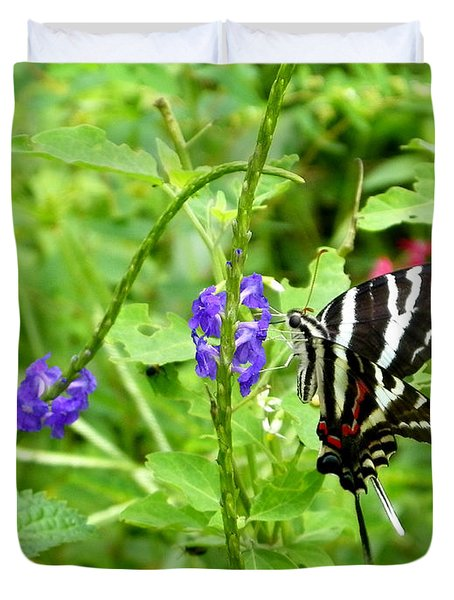 Zebra Swallowtail On Blue Porterweed Duvet Cover