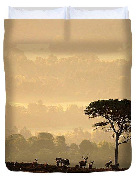 Autumn Morning, Strathglass Duvet Cover
