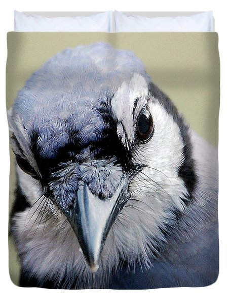 Blue Jay Duvet Cover by Skip Willits