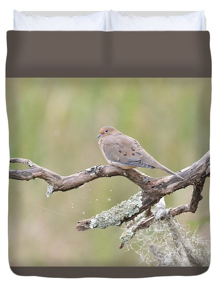 Early Mourning Dove Duvet Cover