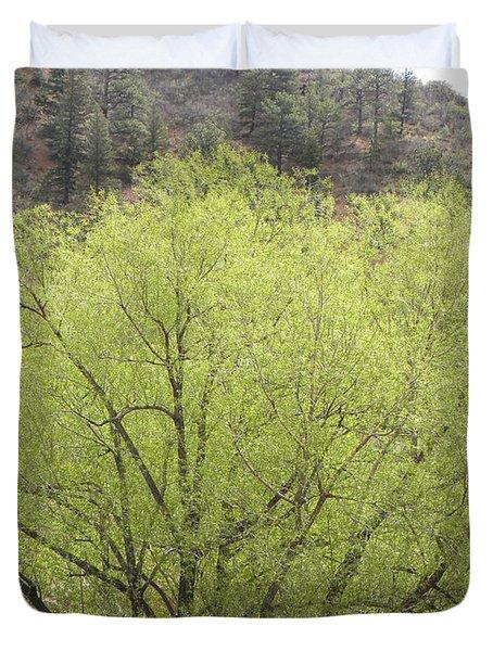 Tree Ute Pass Hwy 24 Cos Co Duvet Cover